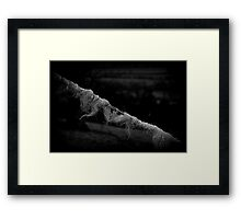 The Beginning Of The Twist Framed Print