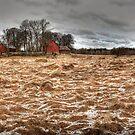 A farm scene by Elisabeth van Eyken