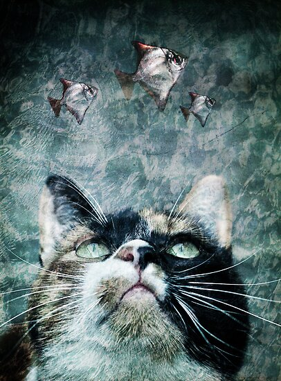 Abyss cat #2 by Laura Melis