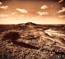 Mad Max was here by Annette Flottwell