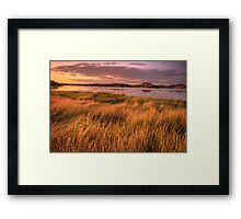 Willow Lake Violet Framed Print