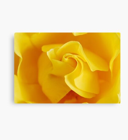Yellow Precious Canvas Print