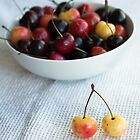 bowl of cherries and one yellow pair by tara romasanta
