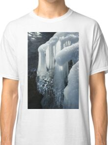 Elegant Christmas Ornaments From Mother Nature Classic T-Shirt