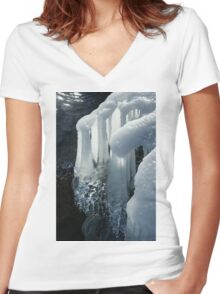 Elegant Christmas Ornaments From Mother Nature Women's Fitted V-Neck T-Shirt