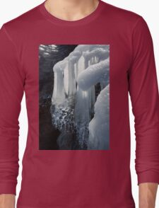 Elegant Christmas Ornaments From Mother Nature Long Sleeve T-Shirt