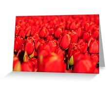 Holland on fire Greeting Card