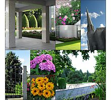 Summer at the Preston Temple - Collage Photographic Print