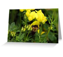 Talk about a Bee in Your Bonnet Greeting Card