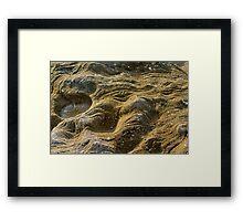 La Perouse rockpool 2 Framed Print