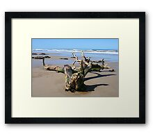Driftwood on the 4WD Beach, NSW Framed Print