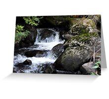 Taggerty Cascades Greeting Card