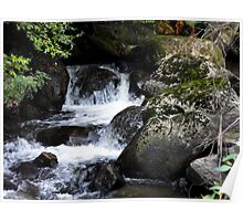 Taggerty Cascades Poster