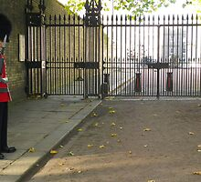 Clarence House with guard by Catinabucket