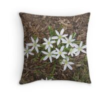 Tiny Tiny Daisy  Throw Pillow
