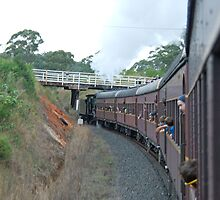 Vintage Steam Train near Coffs Harbour, NSW by Adrian Paul