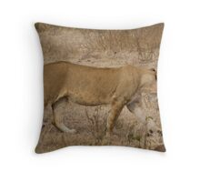 Lion and ostrich egg Throw Pillow