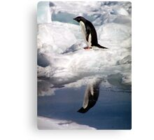 Adelie Penguin in a Reflective Mood Canvas Print