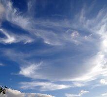 angels always SOAR 0:) by Angelika Sielken