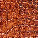 Alligator Skin iPhone Case 4/4s by Jnhamilt