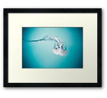 Jellies Invasion at the Baltimore Aquarium Framed Print
