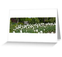 Sping Greeting Card