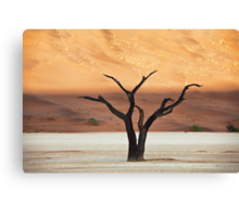 Sculpted Tree Canvas Print