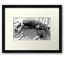 Oh Just Love Me! Framed Print