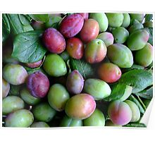 FRESH PLUMS Poster