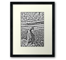 Driftwood Pencil Sketch Framed Print