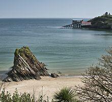 Goscar Rock North Beach Tenby by Steve Purnell