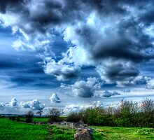 Storm Clouds Gathering by Vicki Field