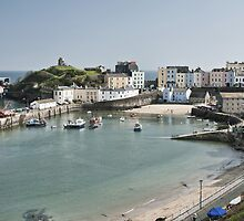 Tenby Harbour From Above by Steve Purnell
