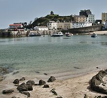 Tenby Harbour North Beach View by Steve Purnell