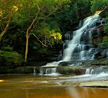 Upper Somersby Falls, NSW by Laura  Knight