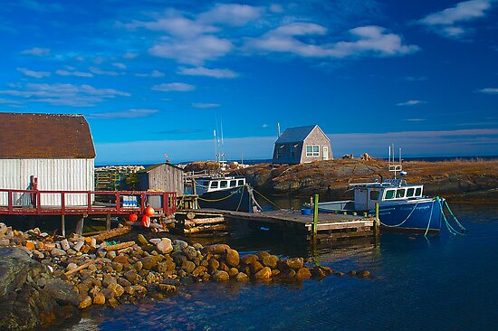 Blue Rocks, Nova Scotia, Canada by Darlene Ruhs