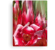 Tulips composition Canvas Print