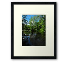 Happy Earth Day 2012...Revelation (Mother Earth)  Framed Print