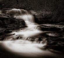 Little River by Erik Brede