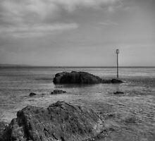 Tenby Seascape Mono by Steve Purnell