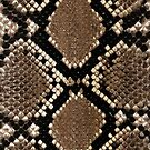 Snake Skin iPhone Case 4/4s by Jnhamilt