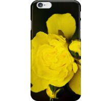 Colorful Yellow Rose Flower Art iPhone Case/Skin