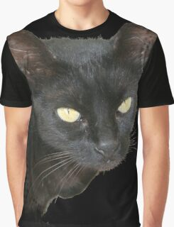 Black Cat Isolated on Black Background Graphic T-Shirt
