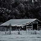 Rustic Barn by joevoz