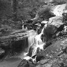 Climbing The Falls by © CK Caldwell IPA