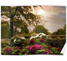 Peony Place Poster