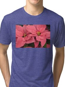 Christmas Greetings with a Vivacious Pink Poinsettia Tri-blend T-Shirt