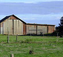 Shed in the middle of nowhere by croust
