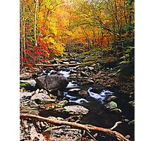 MIDDLE PRONG LITTLE RIVER,AUTUMN Photographic Print