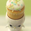 Cupcake Owl by Hilary Walker
